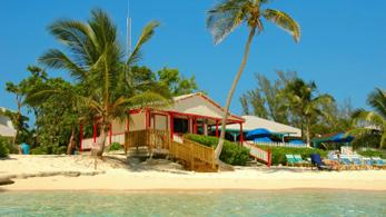 Strandhütte mit Palmen in der Karibik