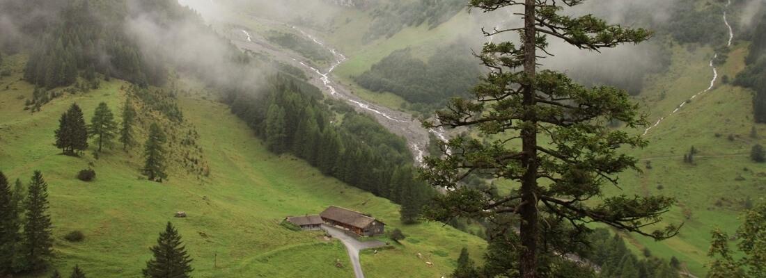 Blick ins Brandnertal, Hütte in den Bergen, Nebel, Österreich