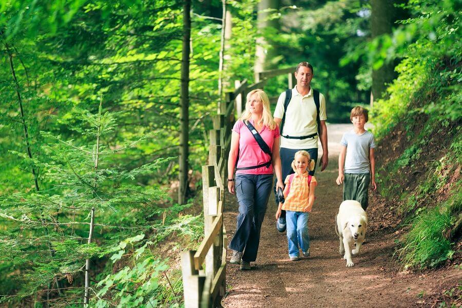 Familie im Wald mit Hund