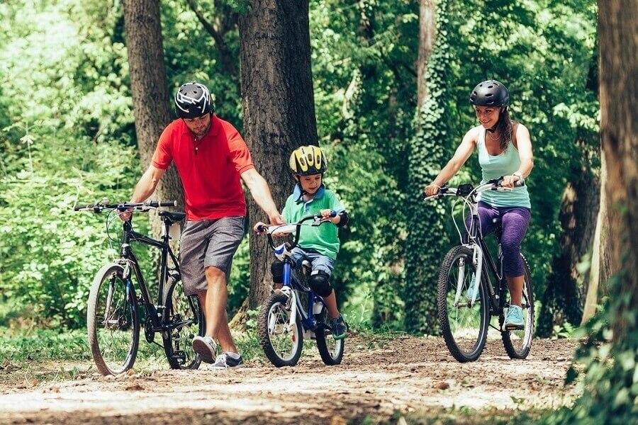 Familie mit Fahrrad im Wald, Harz, Sachsen-Anhalt