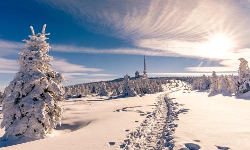 Harzer Winterlandschaft