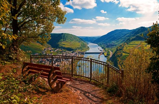 Mosel, Weinberge bei Neef