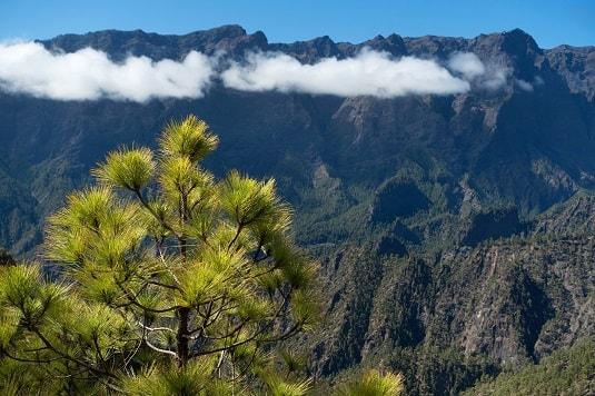 Spanien Kanaren La Palma Naturpark Caldera de Taburiente