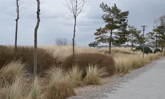 Timmendorfer Strand und Niendorf