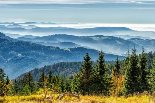 Panorama über Wiesen und Berge im Schwarzwald, Deutschland