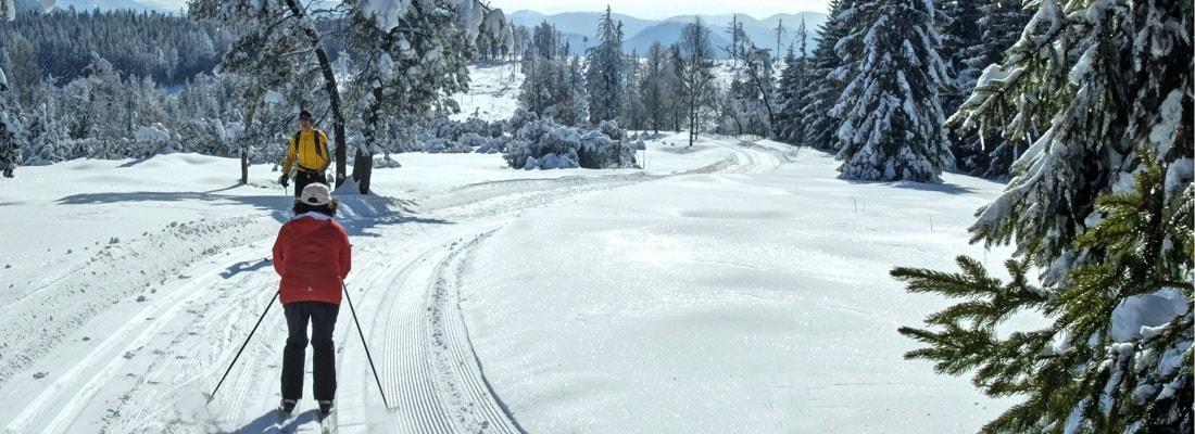 Skilanglauf im Schwarzwald, Winterlandschaft