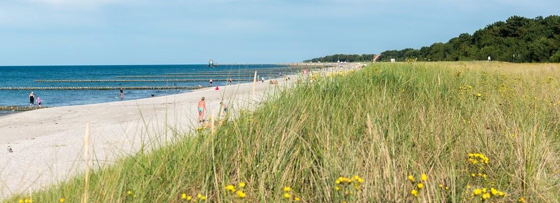 Blick auf den Strand von Zingst, Ostsee, Deutschland